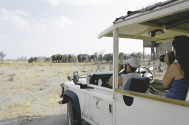 Mit Bush Ways Safaris an einer Wasserstelle mit Elefanten