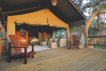 Safarizelt, ©etienne koenig 2010