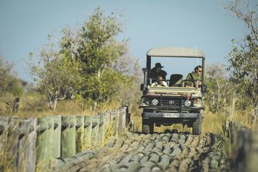 Auf Safari , ©Desert und Delta Safaris