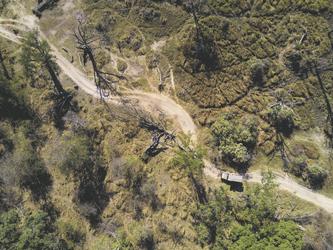 Vogelperspektive Moremi Reserve