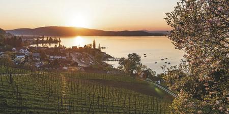 Mannenbach am See