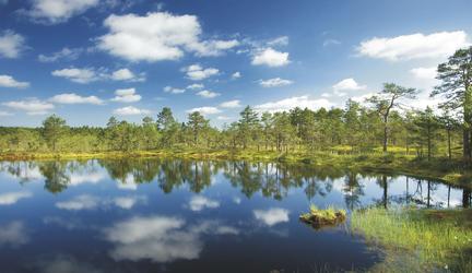 Estland Nationalpark Lahemaa
