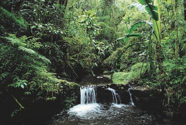 Ein erfrischender Wasserfall