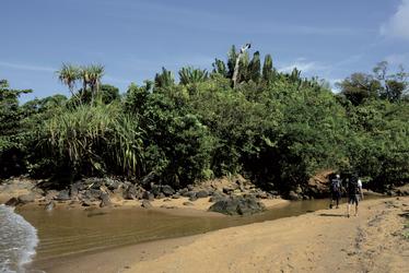 Trekking zwischen Strand und Regenwald