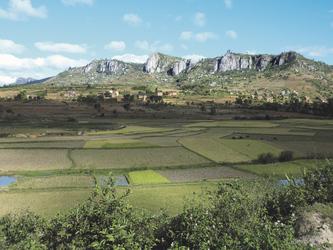 Das Hochland Madagaskars