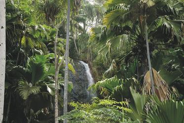 Wasserfall im Vallée de Mai