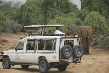 Safari-Fahrzeug mit Hubdach