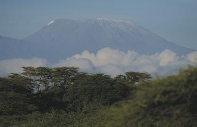 Der Kilimanjaro grüßt aus den Wolken