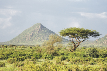 ©Lars Eichapfel, DIAMIR Erlebnisreisen; Kenia aus dem Bilderbuch