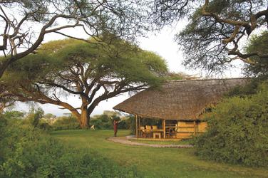 Die Safarizelte stehen herrlich im Grünen