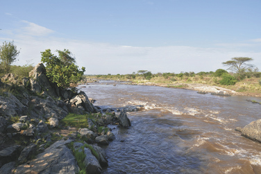 In der Masai Mara, ©Africa-Experience