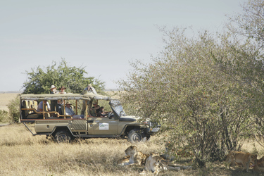 Auf Safari in der Masai Mara, ©Megapixels Productions 2010