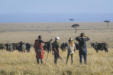 Buschwanderung in der Masai Mara, ©Governors'