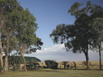 Elefanten im Camp, ©Governors'