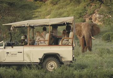 Safari im Samburu