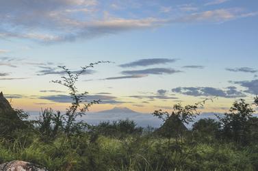 Der Kilimanjaro erhebt sich am frühen Morgen aus den Wolken