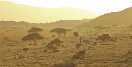 Im Lewa Schutzgebiet unterwegs