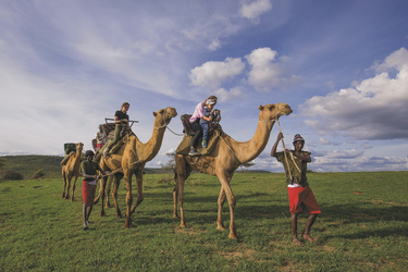 Auf Kamelen unterwegs im Loisaba Schutzgebiet