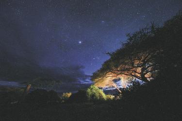 Atemberaubender Sternenhimmel
