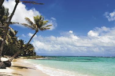 Ein herrlich exotischer Strand