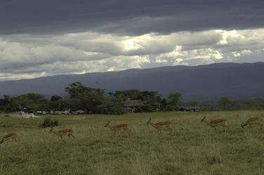 Blick auf die Lake Nakuru Lodge