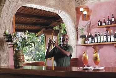 Ihr Barkeeper