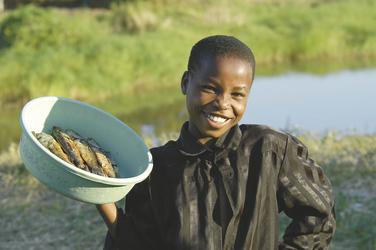 Fisch - das tägliche Brot in Malawi