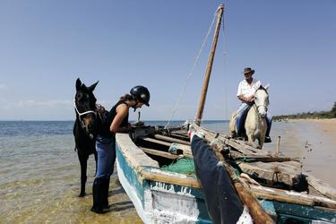 Den Strand zu Pferd erkunden
