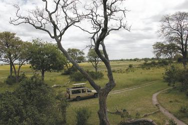 Das grüne Namibia