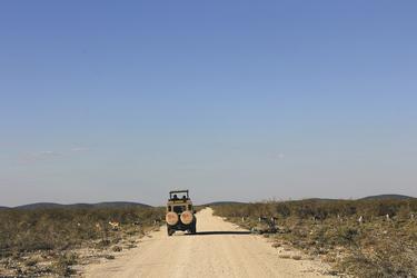 Unterwegs im Safari-Fahrzeug
