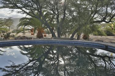 Ein Pool zum Entspannen