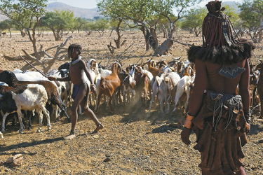 Besuch in einer Siedlung der Himba, ©Namibia Tracks and Trails
