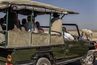 © Taleni Africa Im Etosha Nationalpark