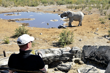 Am Wasserloch im Etosha Nationalpark
