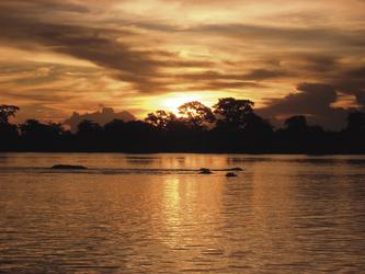 Abendstimmung am Okavango River