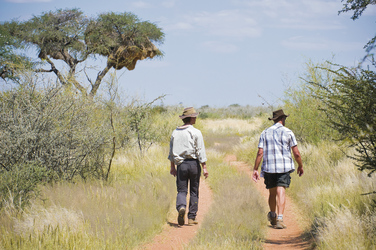 Zu Fuß durch die Kalahari