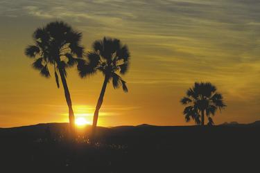 Sonnenuntergang auf der Palmwag Lodge