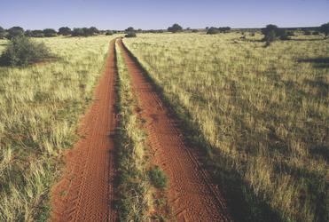 Sandige Piste durch die Kalahari