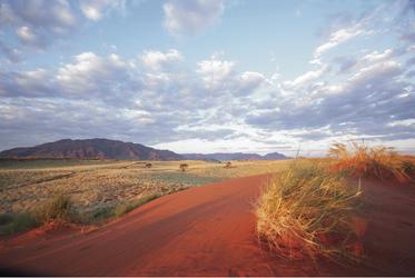 Wüsten-Romantik