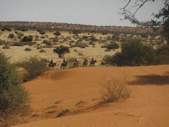 Auf dem Pferd durch die Kalahari