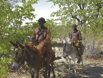 Ovahimbas unterwegs auf Eseln
