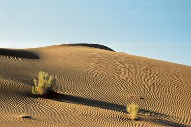 Wunderschöne Dünenlandschaft