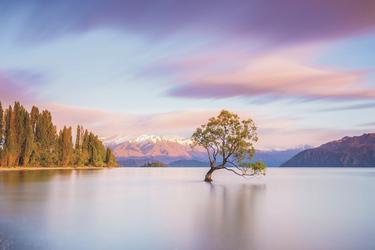 Sonnenaufgang am Lake Wanaka