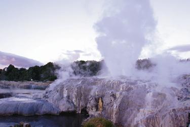 Rotorua Geysir