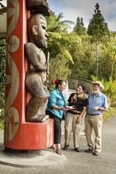 Maorikultur hautnah erleben