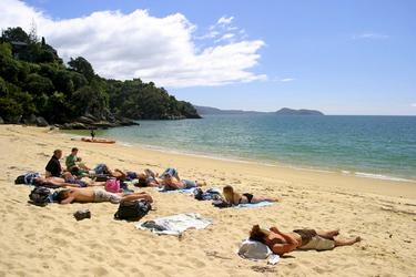 Strandleben im Abel Tasman Nationalpark