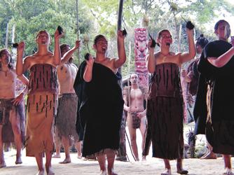 Traditioneller Maoritanz