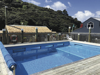 Swimmingpool Lodge9