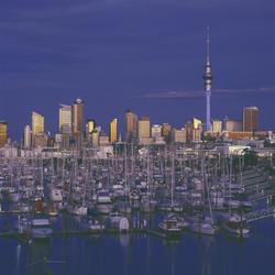 Skyline von Auckland bei Nacht