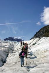 Wandern am Fox Gletscher